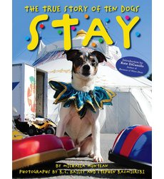 """Picture book with the text """"Stay: The True Story of Ten Dogs"""""""