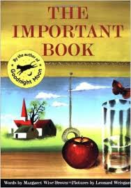 """Picture book with the text """"The Important Book"""""""