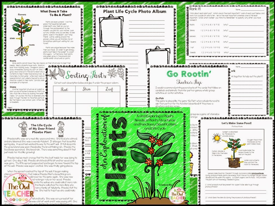 https://www.teacherspayteachers.com/Product/Plant-Unit-Needs-Structure-Function-Classification-Life-Cycle-1809292