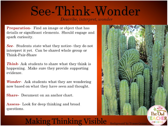 See-Think-Wonder thinking routines for Making Thinking Visible.