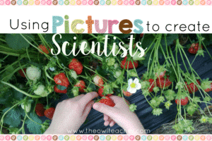 Do you have budding scientists in your upper elementary class? This blog post goes into detail on how you can use pictures to create scientists! This is an easy way to bring real-life science into the classroom. Click through to read more and download freebies!