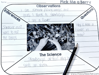 Get your students to look at the world with science eyes! Use pictures in your classroom as morning work or through literacy centers to get them thinking about and noticing science more in their lives. Read about how and get a freebie here!