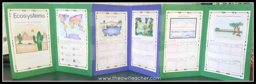 My district's science curriculum skips teaching about ecosystems and biomes, for some reason, but includes adaptations. I want my students to understand why adaptations are necessary, so I squeeze in a quick lesson or two about ecosystems so they better understand. Read about my lessons for ecosystems and the engaging, hands-on activities that I do to pique students' interest!