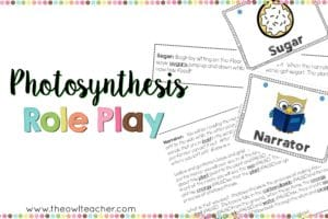 Teaching photosynthesis in upper elementary science does not have to be boring. Check out this fun idea on how teaching about the process of photosynthesis in plants can be engaging!