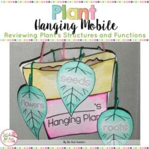 Plant's Structure and Functions Hanging Mobile Craftivity