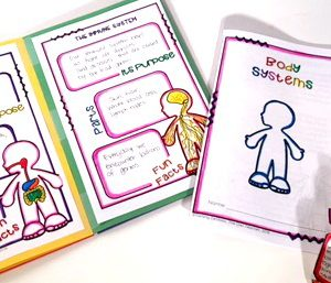Human Body Systems Activity | Foldable Booklet Printable & Digital (Google)