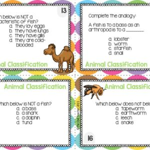 Animal Classification Task Cards