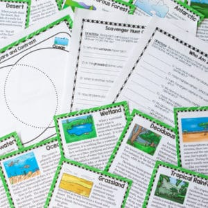 Ecosystems Scavenger Hunt Printable & Digital (Google)
