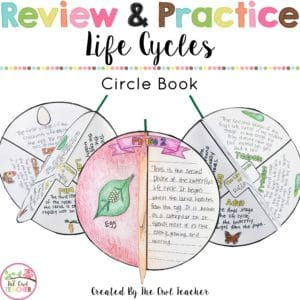Life Cycles Circle Book Craftivity