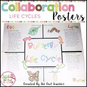 Life Cycle Collaboration Posters