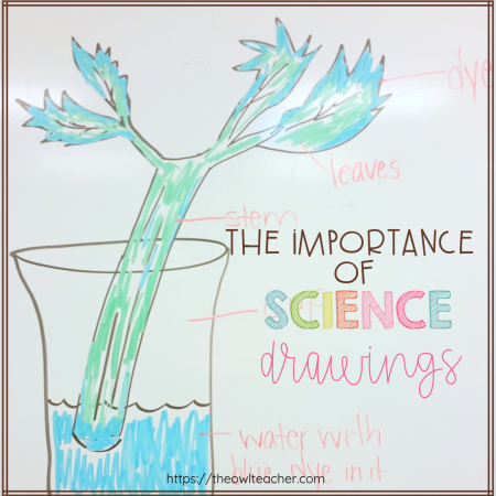 Are you using science drawings in your classroom? These drawings are important and used by both scientists and engineers. Learn everything you need to know to help your students!