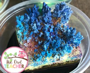 During your rocks and minerals unit, have you ever want to create your own crystal garden or grow your own minerals? This post teaches you exactly what you need to do during your science lesson to make it happen.