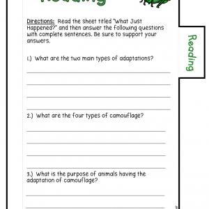 Camouflage Investigation Booklet (Adaptations) Printable & Digital