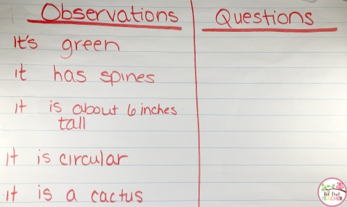 Stimulate curiosity with your students through this process of observation and questioning in science. It piques their interests and engages!