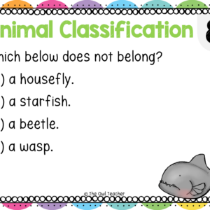Animal Classification Boom Cards