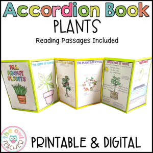 Plant Accordion Foldable Booklet – All Topics