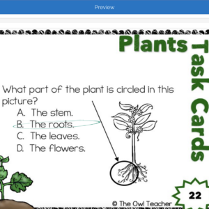 Plant Boom Cards | Plant Task Boom Cards